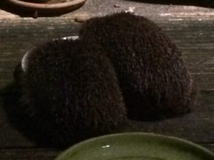 Table for two at the Hedgehog Cafe