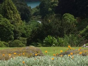 Trebah Gardens, Our Backdrop!