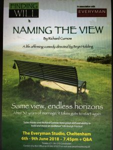 Naming The View Poster /Flyer front