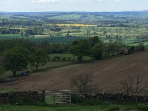 On the way to Bardon Mill, the view from St Oswald's Church, Heavenfield, Northumbria