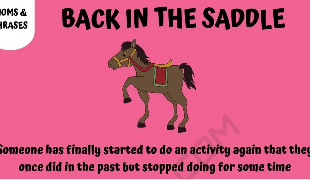 THE DEFINITION OF BACK IN THE SADDLE